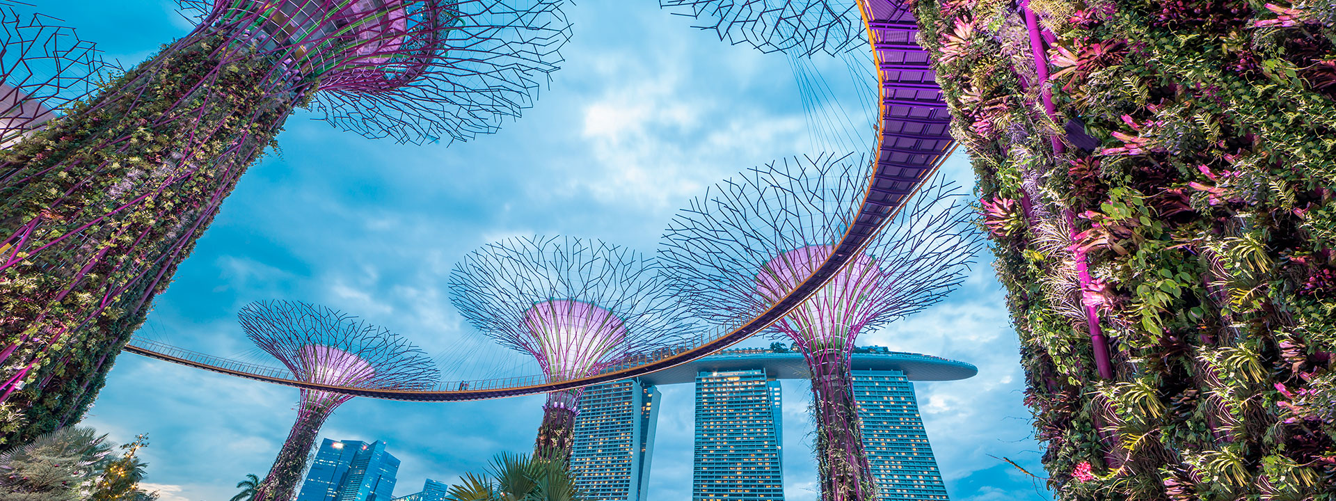 best-camps-singapore