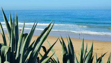 Best-Summer-Camps-in-Cadiz