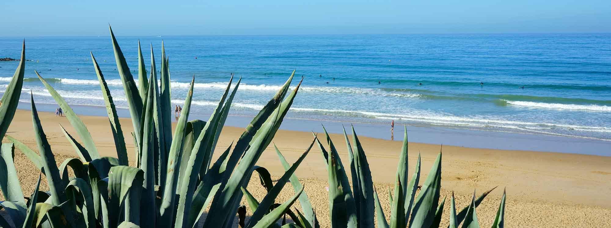 Best Summer Camps Cadiz