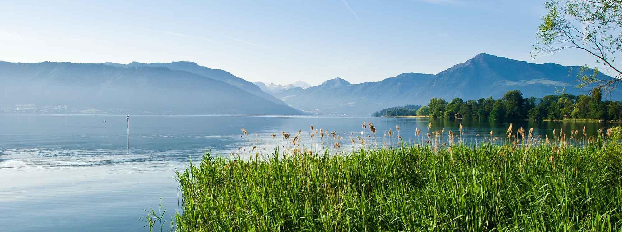 Best Summer Camps Zug